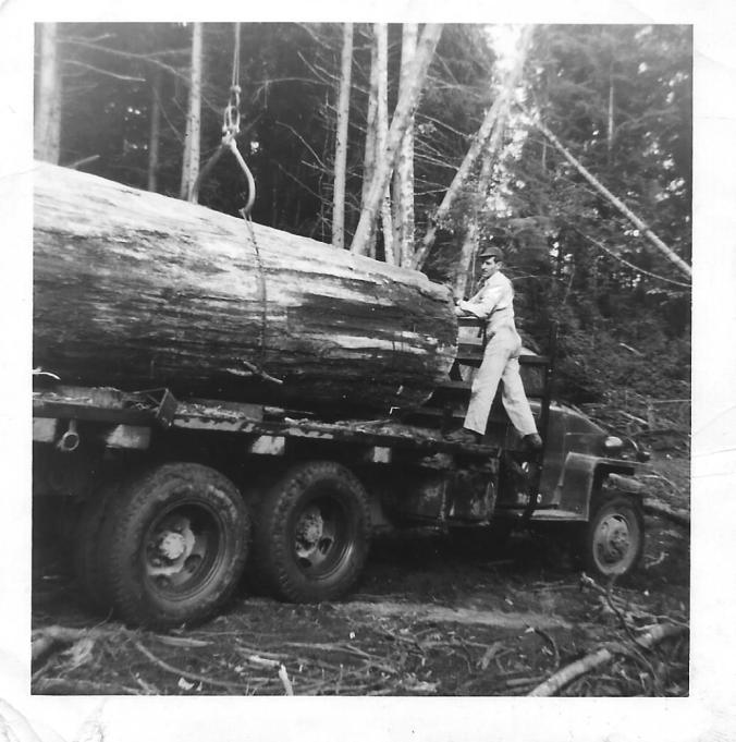 Large log on truck, man standing on running board